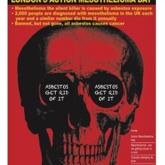 Mesothelioma Day Magazine 2016